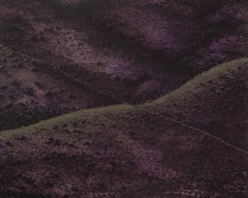 """2004-09- Primer Premio en el XXII Certamen Nacional de Pintura """"Villa de Herencia"""" (Ciudad Real)."""