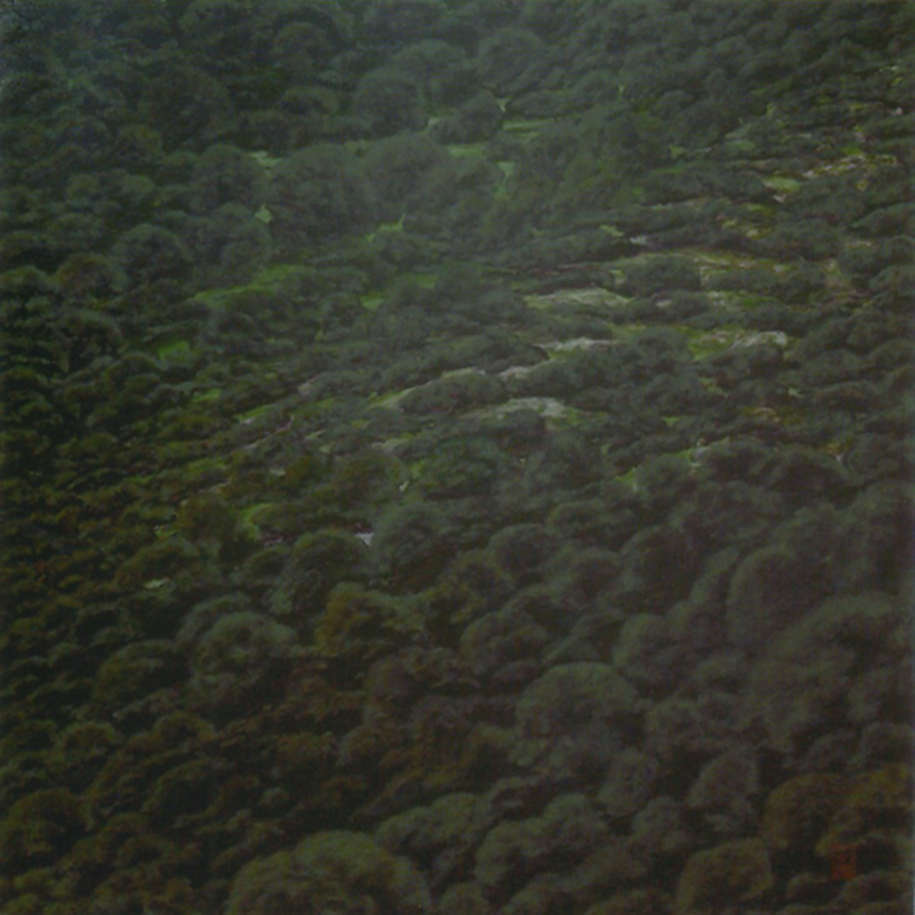 Segundo Premio en el IX Premi Nacional de Pintura Ciutat D'Algemesí (Valencia).